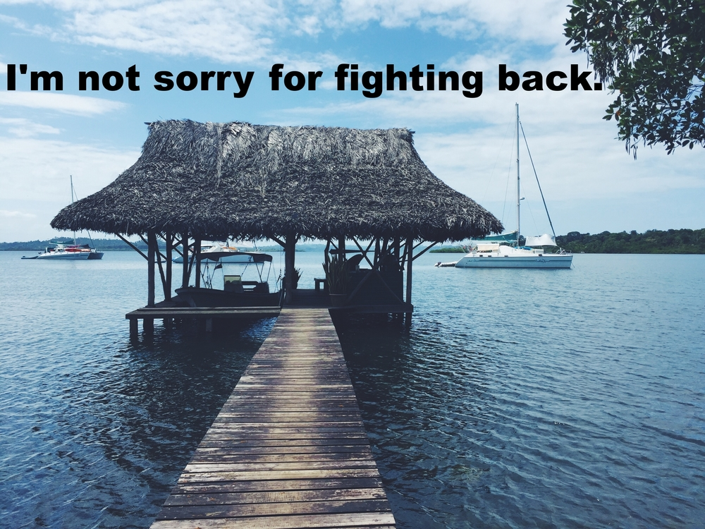 "Silvia March 29 2016 Image of a narrow wooden dock leading down to a small thatched hut where a small boat, in shadow, is docked. Beyond the hut three larger boats with tall masts are visible. The sky and water are bright blue. ""I'm not sorry for fighting back"" is overlaid."