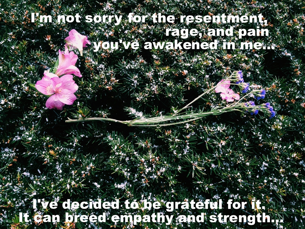 "Anonymous April 26 2016 Image of a dark green evergreen with snow sprinkled on it. A few purple and pink flowers rest on top. ""I'm not sorry for the resentment, rage, and pain you've awakened in me... I've decided to be grateful for it. It can breed empathy and strength..."" is overlaid."