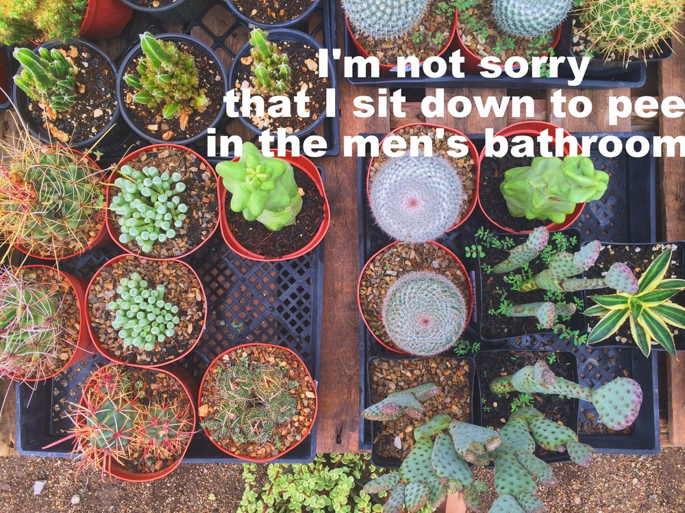 "Anonymous April 28 2016 Image of several flats of small succulents and cacti, photographed from directly above. ""I'm not sorry that I sit down to pee in the men's bathroom"" is overlaid."
