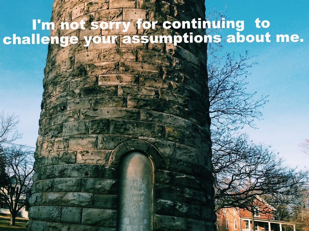"Anonymous April 25 2016 Image of a round stone tower against a blue sky. There is an arch of a doorway in the front of the tower, but the door is closed off. Faintly, ""Let down your hair"" is graffitied onto the door. There are trees behind the tower, and houses. ""I'm not sorry for continuing to challenge your assumptions about me"" is overlaid."