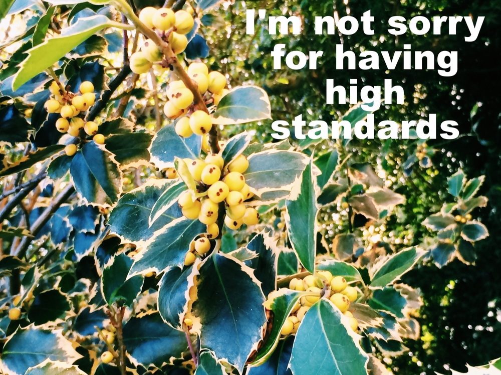 "Anonymous April 27 2016 Close-up image of dark green leaves with yellow edges on branches with yellow berries in bunches.  ""I'm not sorry for having high standards"" is overlaid."