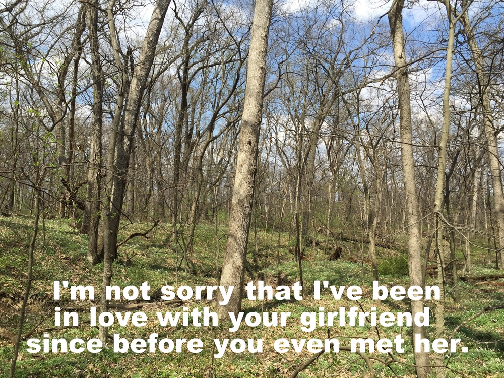 "Anonymous May 19 2016 Image of bare trees just beginning to grow new leaves. The ground beneath them is also starting to get green again. ""I'm not sorry I've been in love with your girlfriend since before you even met her"" is overlaid."