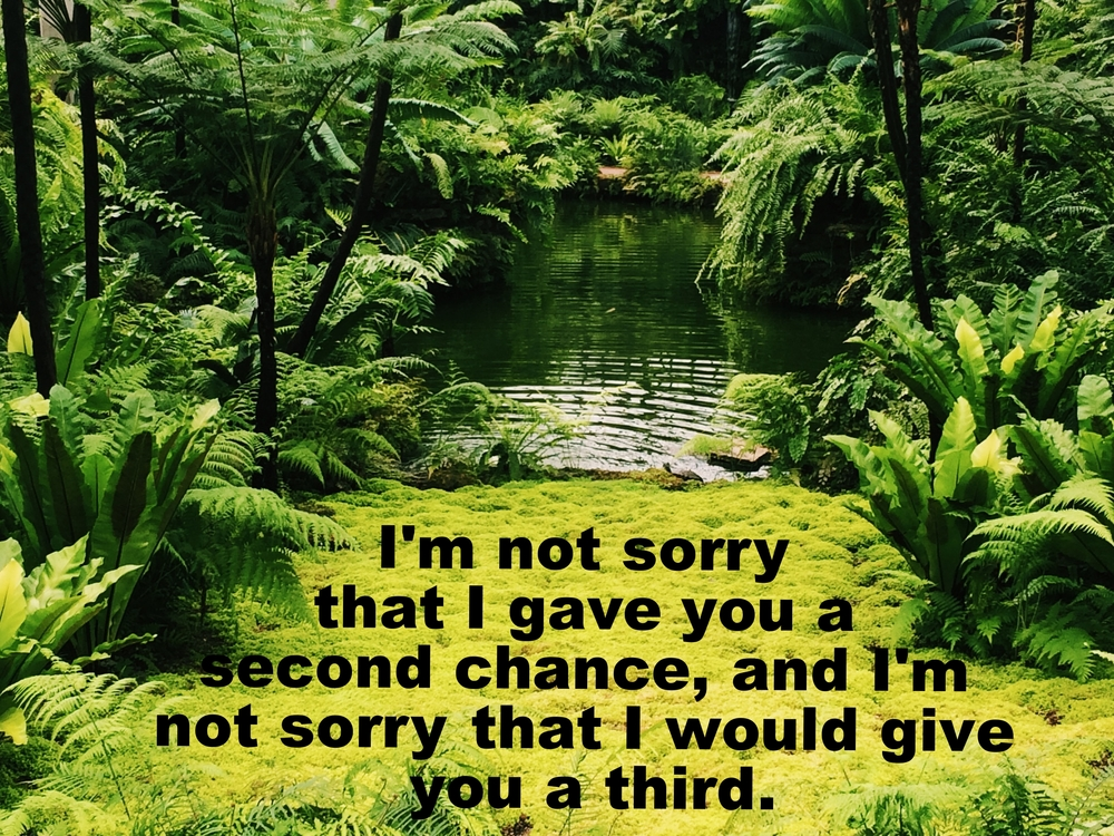 "Anonymous May 25 2016 Image of lush ferns and trees surrounding a narrow pond. Plants are reflected in the rippled water, and a light green bed of soft moss foregrounds the picture. ""I'm not sorry that I gave you a second chance, and I'm not sorry that I would give you a third"" is overlaid."