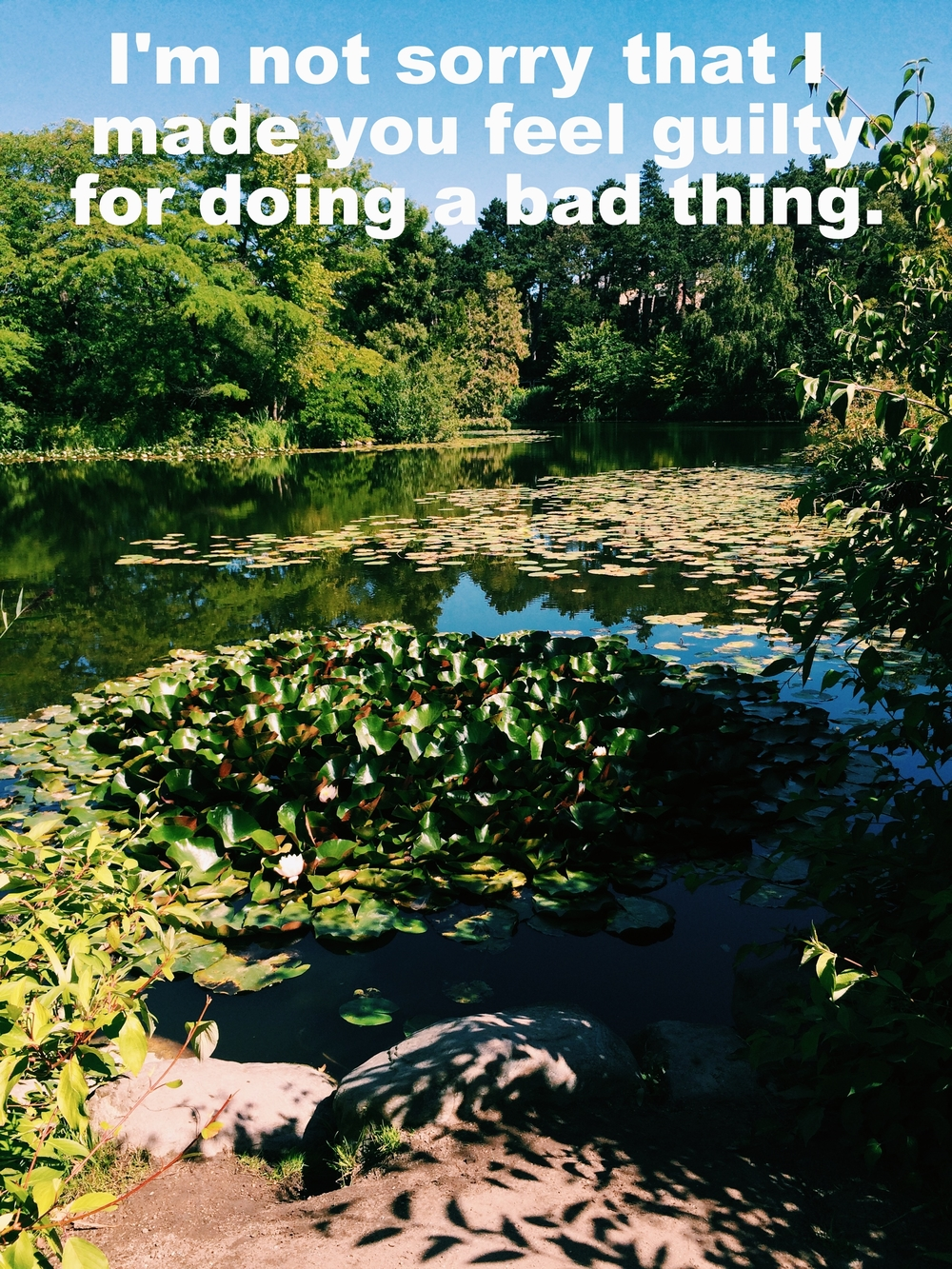 "Anonymous April 26 2016 Image of a pond with lily pads and water plants in the sunlight. Trees are reflected in the water. ""I'm not sorry that I made you feel guilty for doing a bad thing"" is overlaid."