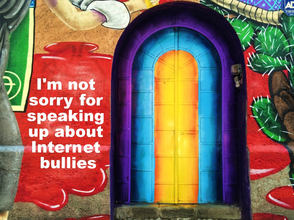 "Anonymous April 22 2016 Image of a painted concrete wall and arched doorway. The door is painted in arcs of purple, light blue, and gold. To the right of the door is a painted cactus in front of a red splotch that spills over to the other side of the door. ""I'm not sorry for speaking up about Internet bullies"" is overlaid."