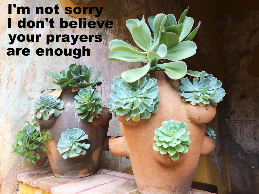 "Anonymous June 19 2016 Image of two large clay pots with smaller mini-pots on the sides of them. Succulents grow out of all of the various nooks of the clay pots. ""I'm not sorry I don't believe your prayers are enough"" is overlaid."