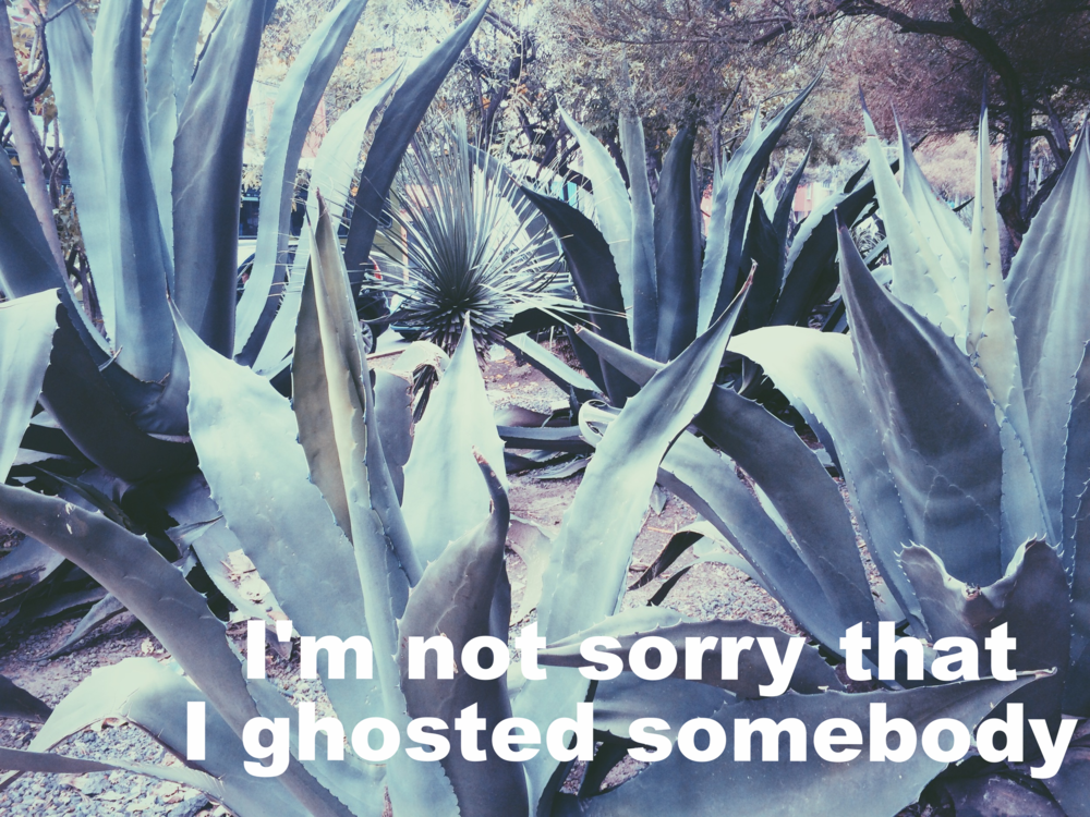 "Anonymous June 24 2016 Image of spiky, blue-green agave plants shot from the ground level. ""I'm not sorry that I ghosted somebody"" is overlaid."