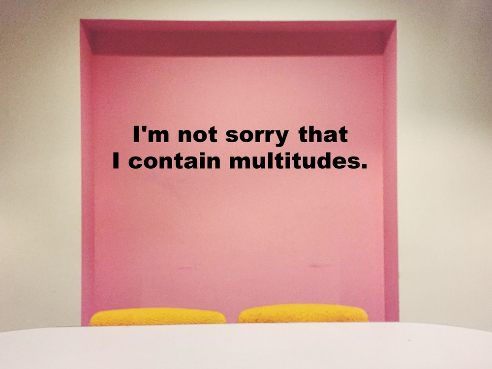 "Anonymous July 27 2016 Image of a pink square painted on a white wall. In front of the square is a white table with two yellow chairs. ""I'm not sorry that I contain multitudes"" is overlaid."