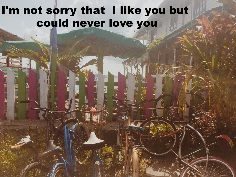 "Anonymous July 30 2016 Image of several bikes parked in front of a fence painted pink, green, and white. Behind the fence stand palm trees and umbrellas, and beyond that, water. ""I'm not sorry that I like you but could never love you"" is overlaid."