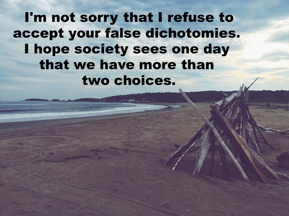 "jshine1224 September 18 2016 Image of a beach under cloudy skies. In the foreground a rough hut or sculpture has been made from driftwood. ""I'm not sorry that I refuse to accept your false dichotomies. I hope that society sees one day that we have more than two choices"" is overlaid."