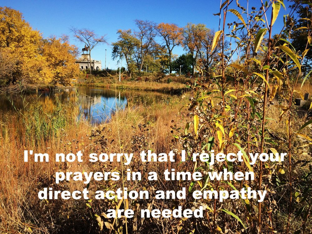 "Anonymous November 11 2016 Image of tall grass and trees, golden in autumn, surrounding a pond. There's a monument of a person on a horse further in the background. ""I'm not sorry that I reject your prayers in a time when direct action and empathy are needed"" is overlaid."