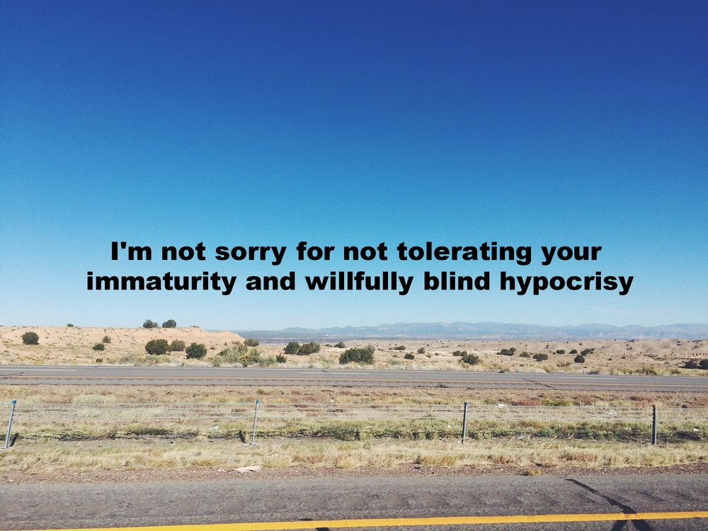 "Julie Ann March 6 2016 Image of a flat desert panorama shot from a car. ""I'm not sorry for not tolerating your immaturity and willfully blind hypocrisy"" is overlaid."