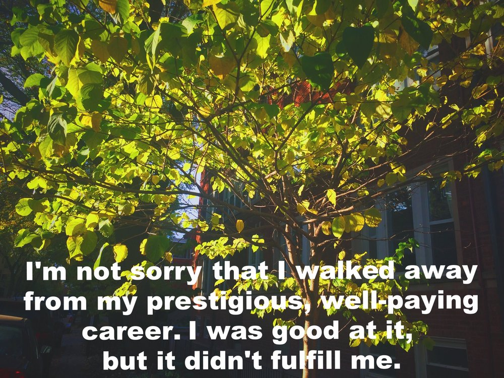 "@paulwittredge December 9 2016 Image of a young tree, green leaves illuminated and nearly translucent in the sun. ""I'm not sorry that I walked away from my prestigious, well-paying career. I was good at it, but it didn't fulfill me"" is overlaid."