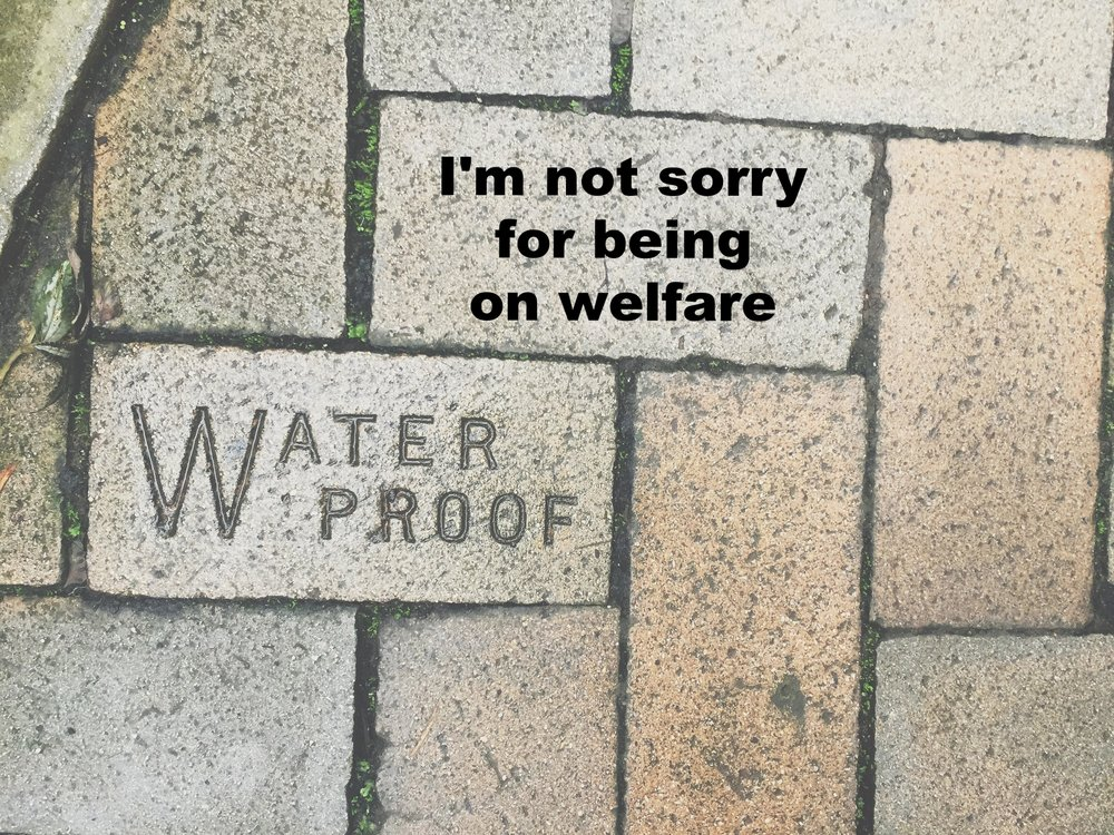 "Sarah J. December 18 2016 Image of bricks placed in various directions. One brick reads ""waterproof."" ""I'm not sorry for being on welfare"" is overlaid."
