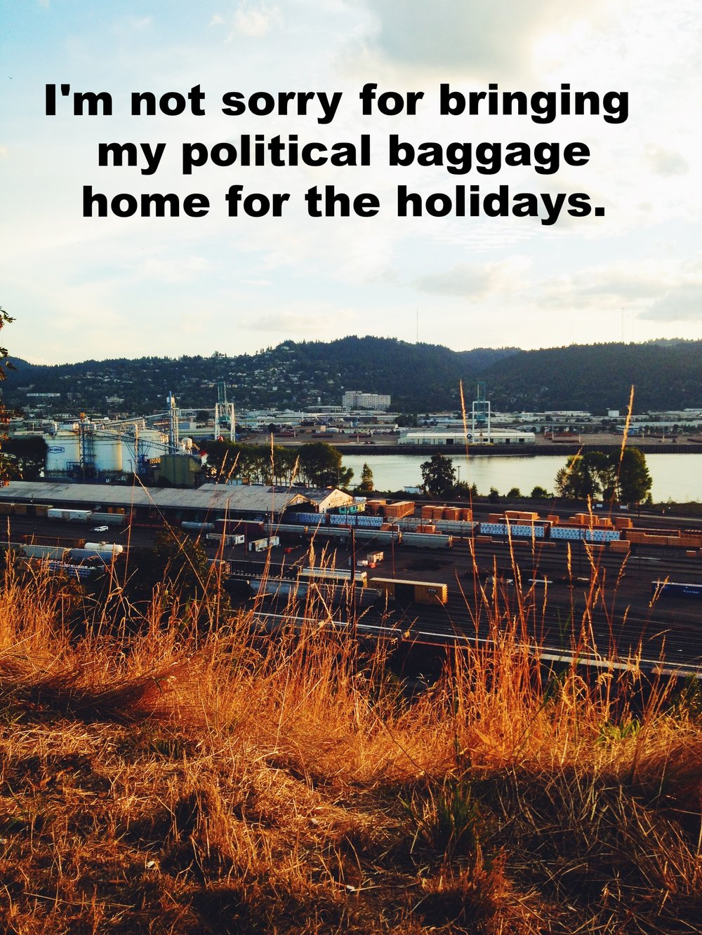 "Anonymous December 22 2016 Image taken from a dry, grassy area looking over a train yard and industrial area. ""I'm not sorry for bringing my political baggage home for the holidays"" is overlaid."