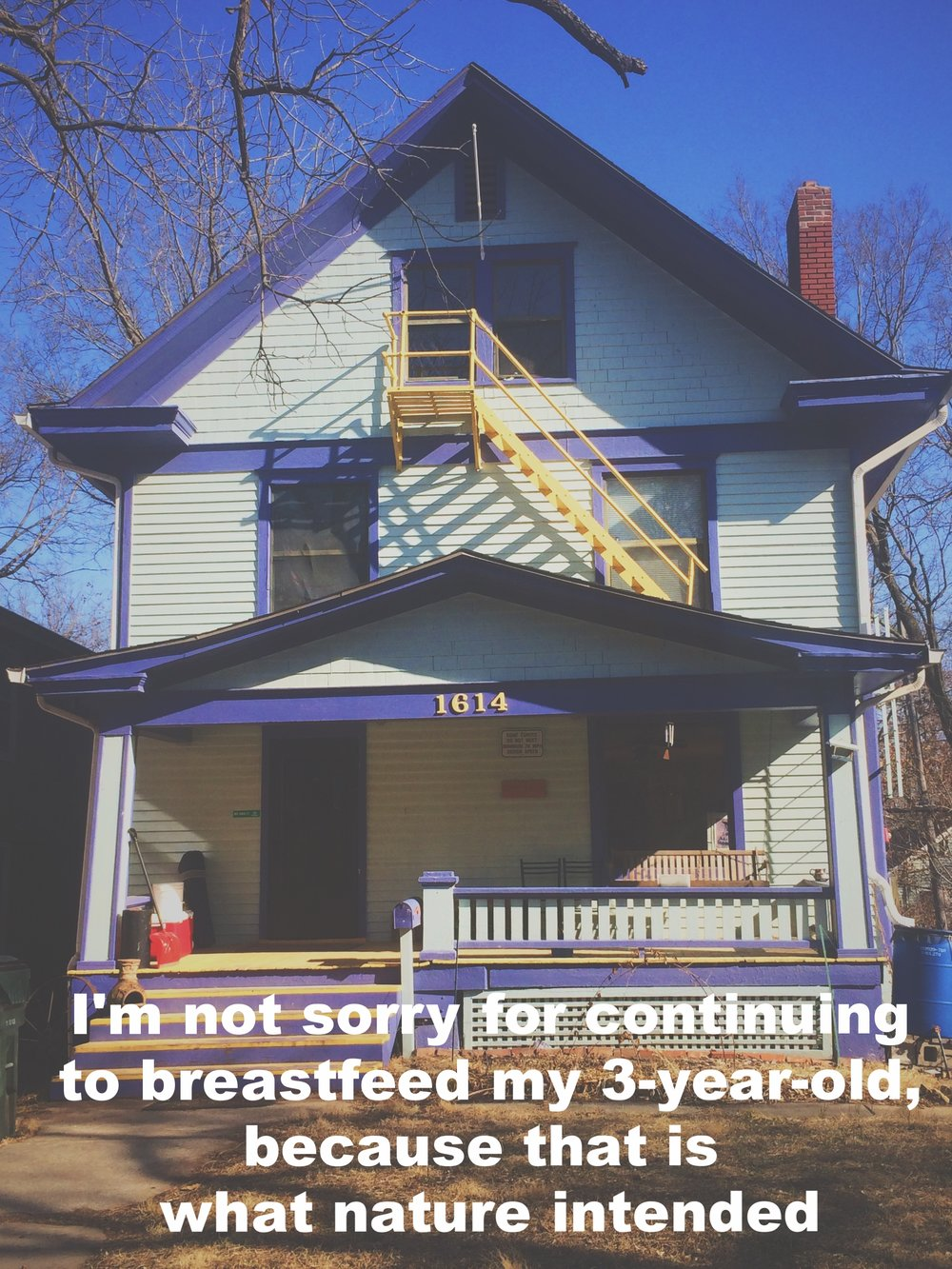 "G. February 5 2017 Image of a light blue house with bright purple and yellow trim in the sunshine. There is a yellow fire-escape staircase from the third to second floor. ""I'm not sorry for continuing to breastfeed my 3-year-old, because that is what nature intended"" is overlaid."