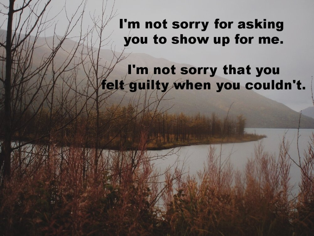 "Anonymous February 22 2017 In a body of calm water, there is small island covered in trees against a backdrop of misty mountains. Reddish-brown bristly plants foreground the picture. ""I'm not sorry for asking you to show up for me. I'm not sorry that you felt guilty when you couldn't"" is overlaid."