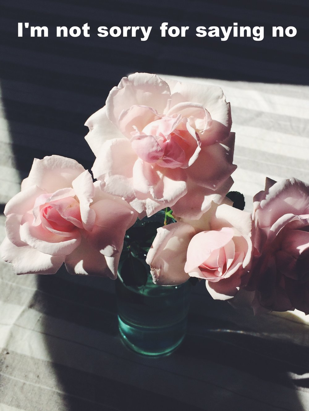 "Elizabeth March 30 2017 Image of several pink flowers in a light blue clear vase on a white and gray striped table cloth in the sun. ""I'm not sorry for saying no"" is overlaid. Photo by Laura Harrington."