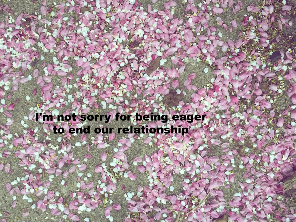 "Anonymous April 29 2017 Image of small pink and white flower petals scattered on cement. ""I'm not sorry for being eager to end our relationship"" is overlaid."