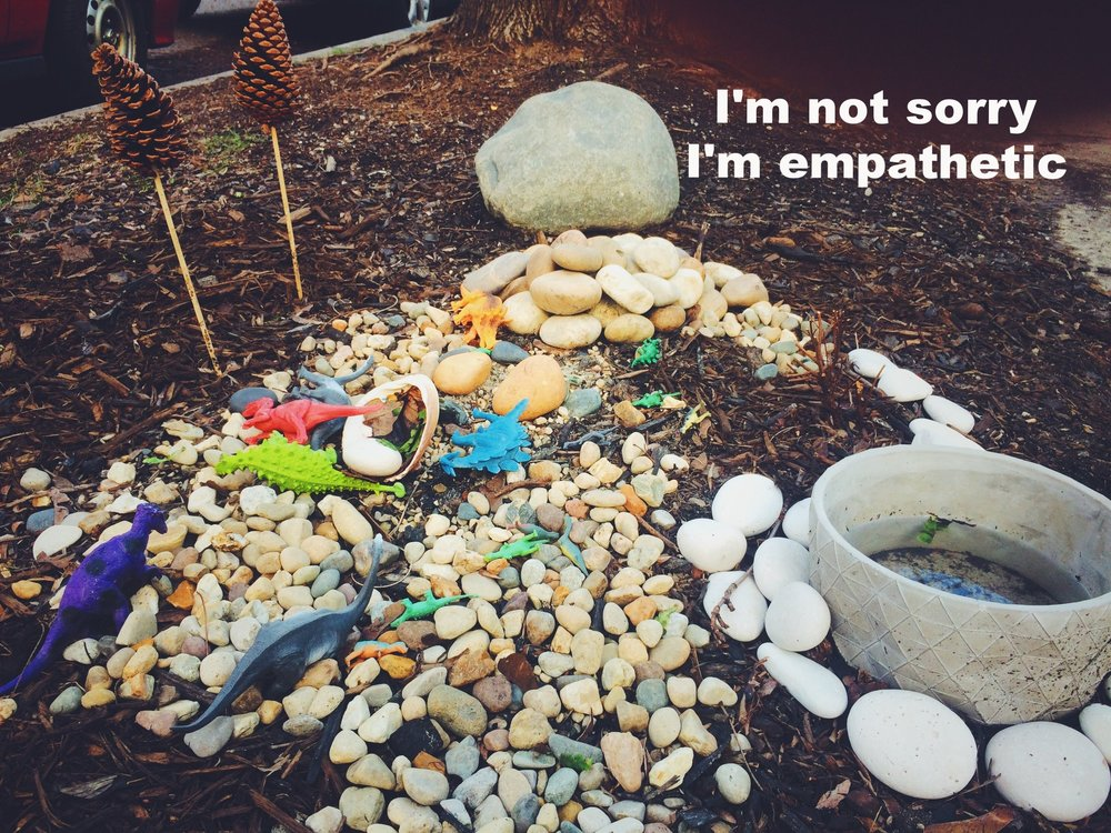 "Anonymous May 6 2017 The ground is covered in wood chips, and there are small stones--some of similar colors and sizes--grouped together. There are colorful toy dinosaurs strewn on top of the stones and two pinecones on sticks sticking out of the ground. To the right, there is a ceramic pot filled partway with rainwater. ""I'm not sorry I'm empathetic"" is overlaid."