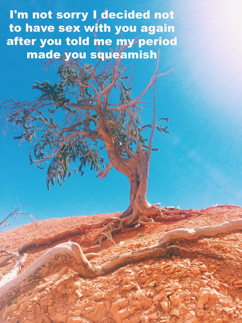 "Liz May 18 2017 A tree with exposed and intricate roots stands tall and alone on red desert rock. The twisted branches lean off to the left and have some bunches of leaves and some bare branches. The sky is a clear blue and the sun is shining. ""I'm not sorry I decided not to have sex with you again after you told me my period made you squeamish"" is overlaid."