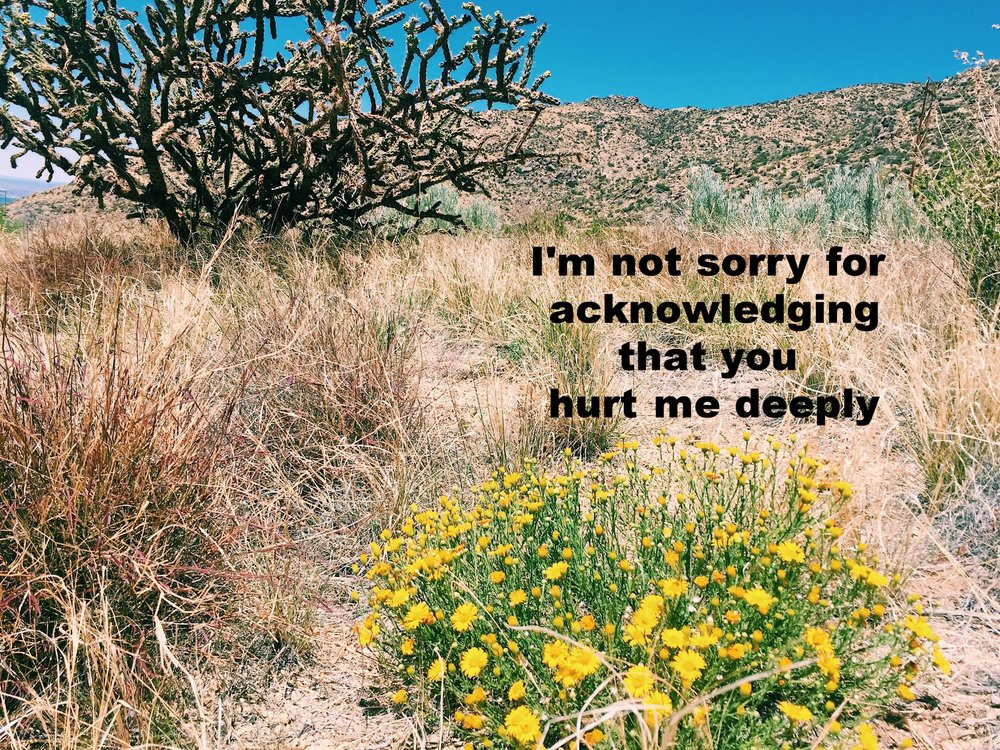 """Anonymous May 28 2017 Image of scrub grass, a short flowering bush with yellow flowers, and large spindly cactus with mountains and blue sky in the background. """"I'm not sorry for acknowledging that you hurt me deeply"""" is overlaid."""