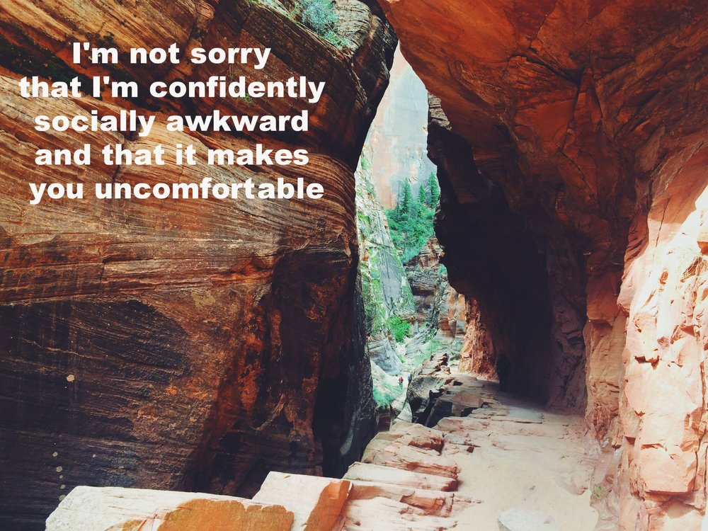 """Anonymous May 28 2017 Red canyon walls meet in an arch with a pathway below. Pine trees and rocks are visible through the underpass.""""I'm not sorry that I'm confidently socially awkward and that it makes you uncomfortable"""" is overlaid."""