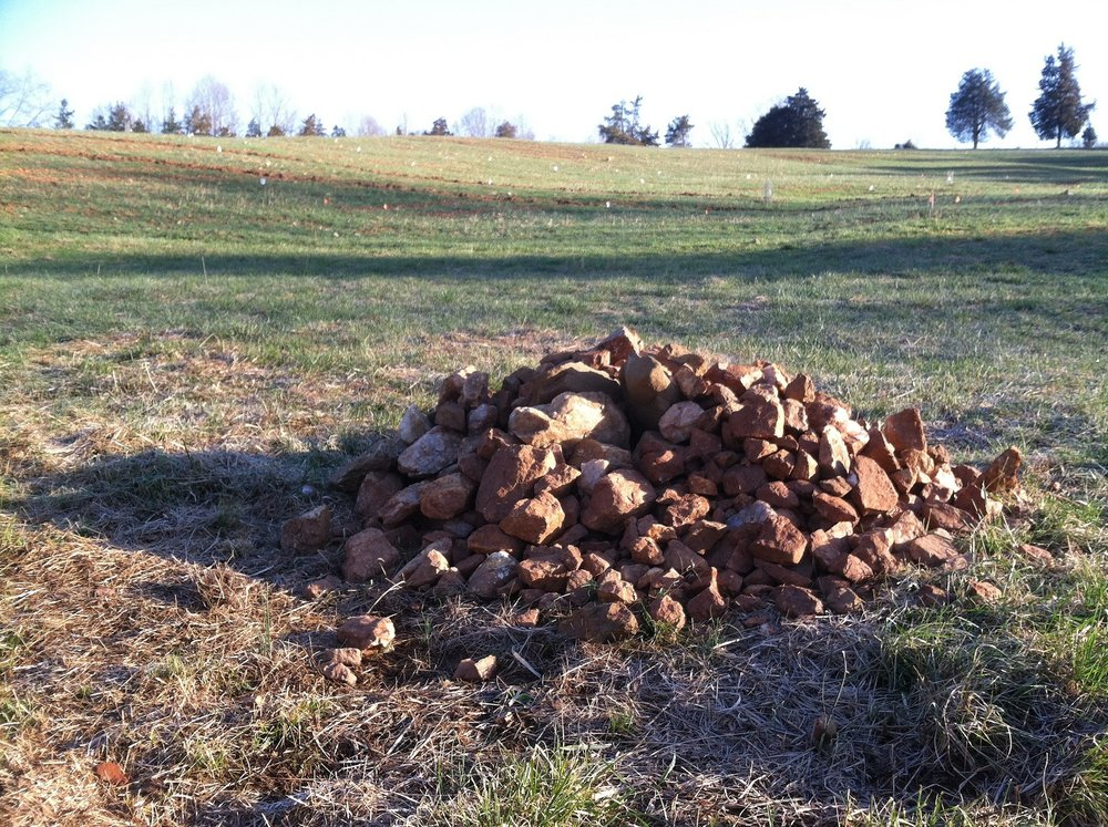 The rock picking begins. For posterity, this is the wee pile before it becomes a monster.