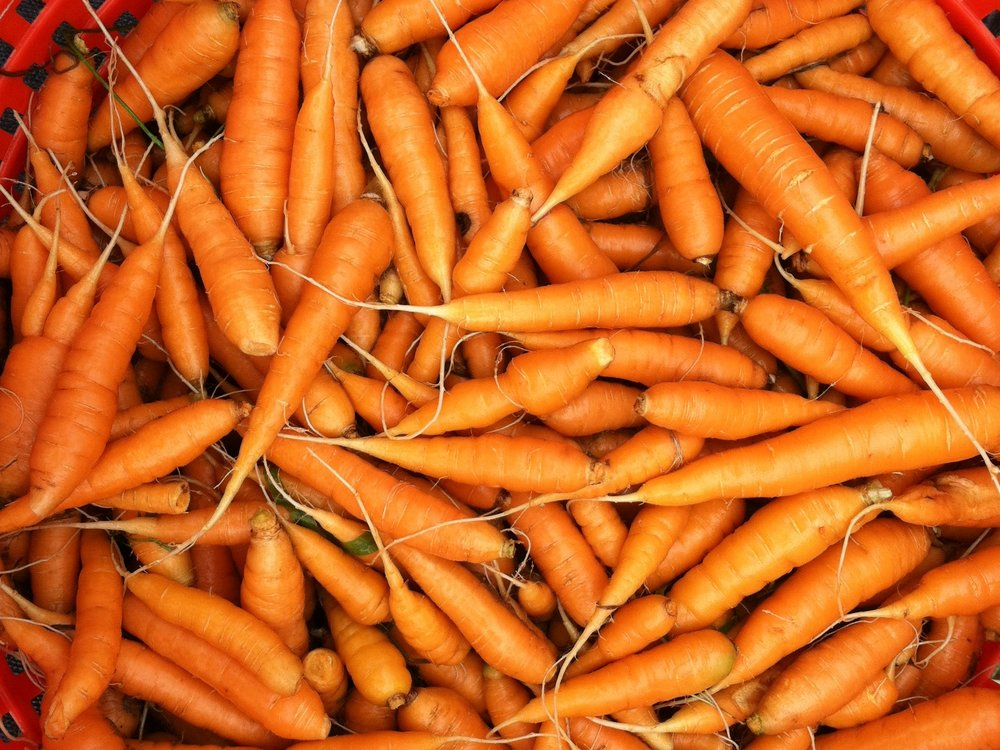 Wee though they may be, they're here. Carrots!