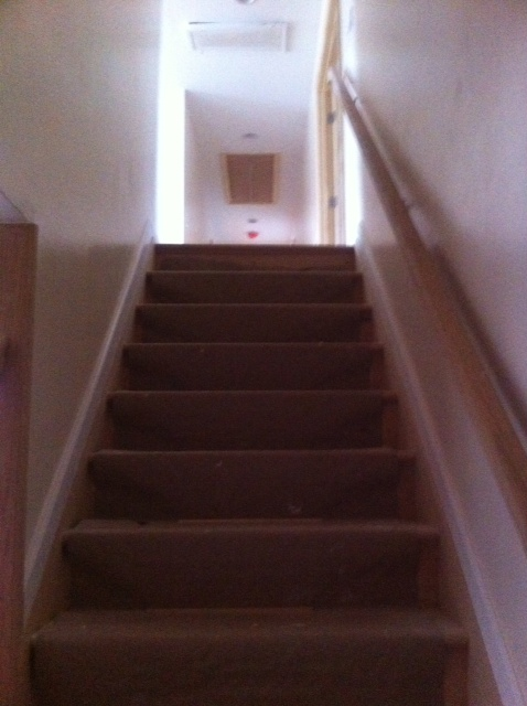 Elizabeth Murphy's Home - New Stairs & a Whole New Floor