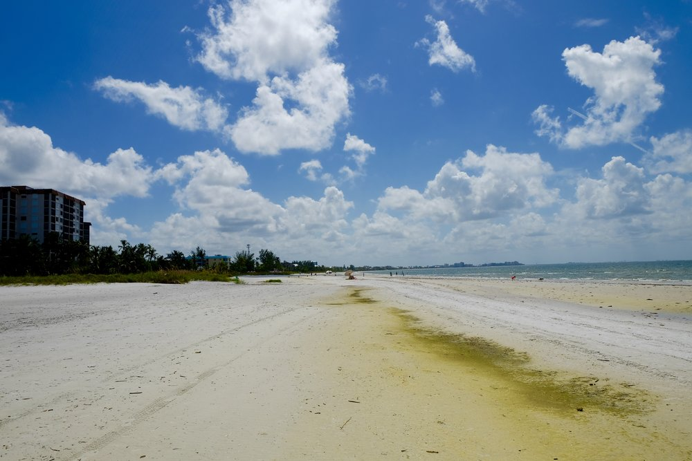 Fort Myers Beach: Green Sand