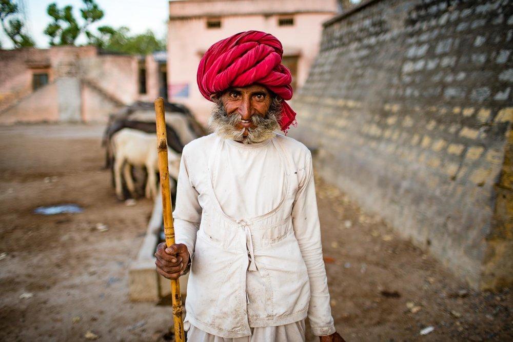 Shepard in Rajasthan