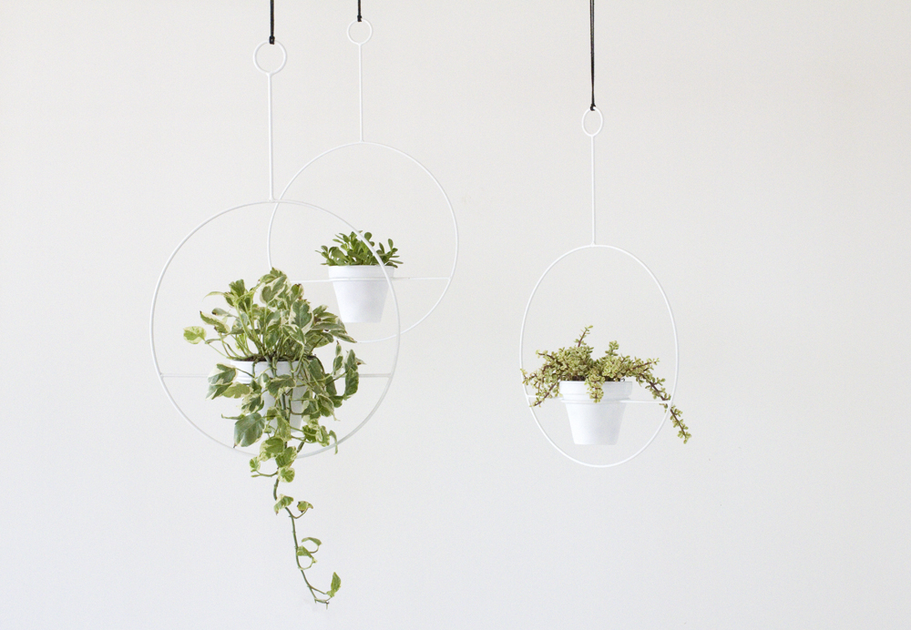 Circle Plant Holder by Sonadora