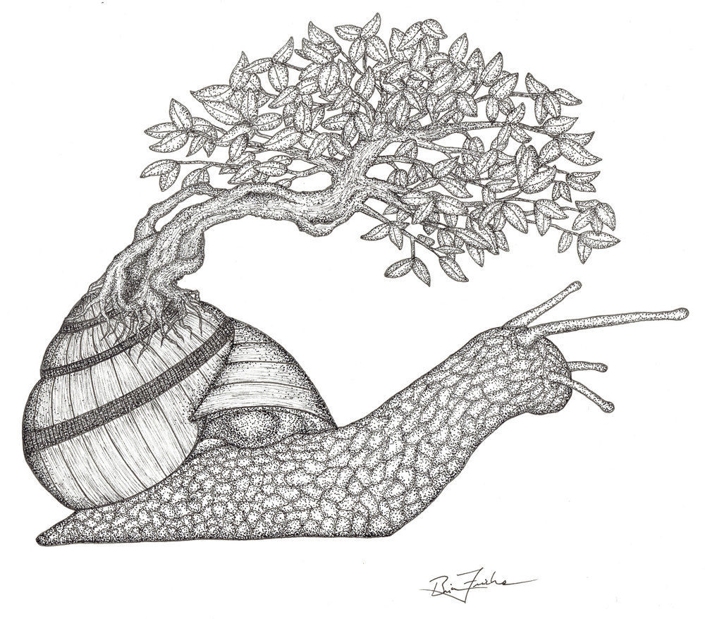 Bonsai Snail