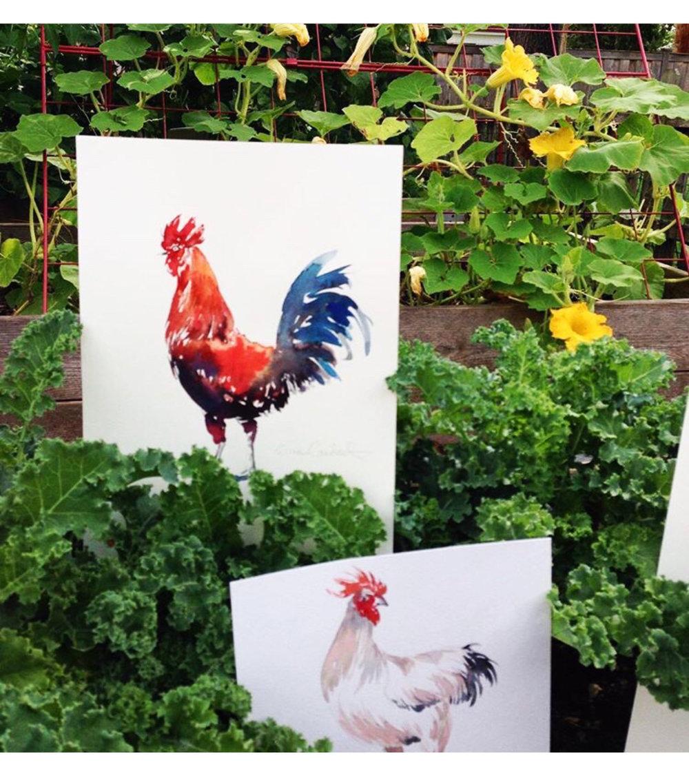 My garden chickens, thanks Buttercup.