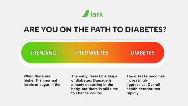 Prediabetes - Symptoms, Prevention and Treatment Guide | Lark Health