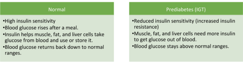Normal glucose levels verses someone with impaired glucose intolerance (prediabetes).