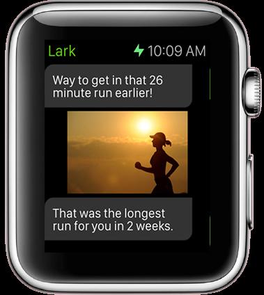 Lark Apple Watch activity