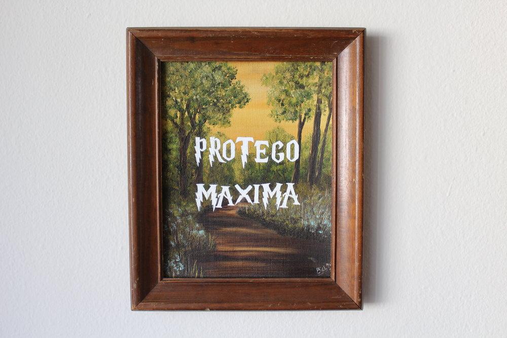 Protego Maxima