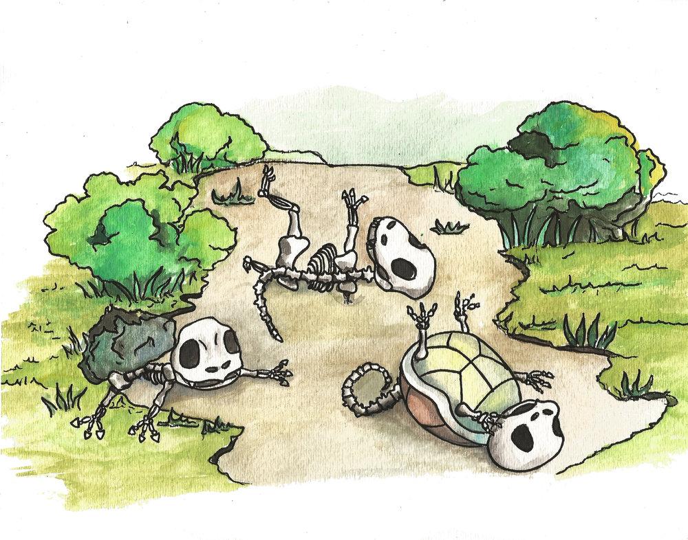 pokemon skeletons.jpg