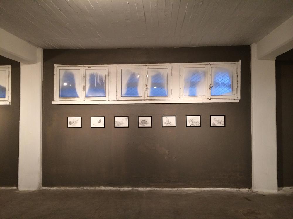 wall-6x9.jpg