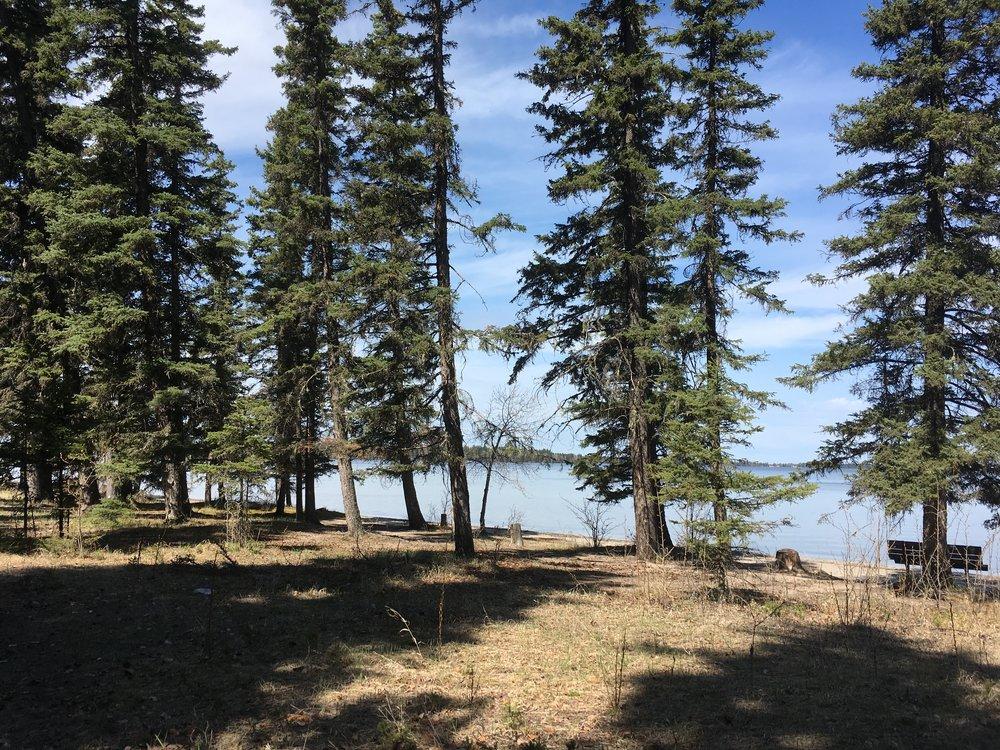 2017-05-20 Candle Lake