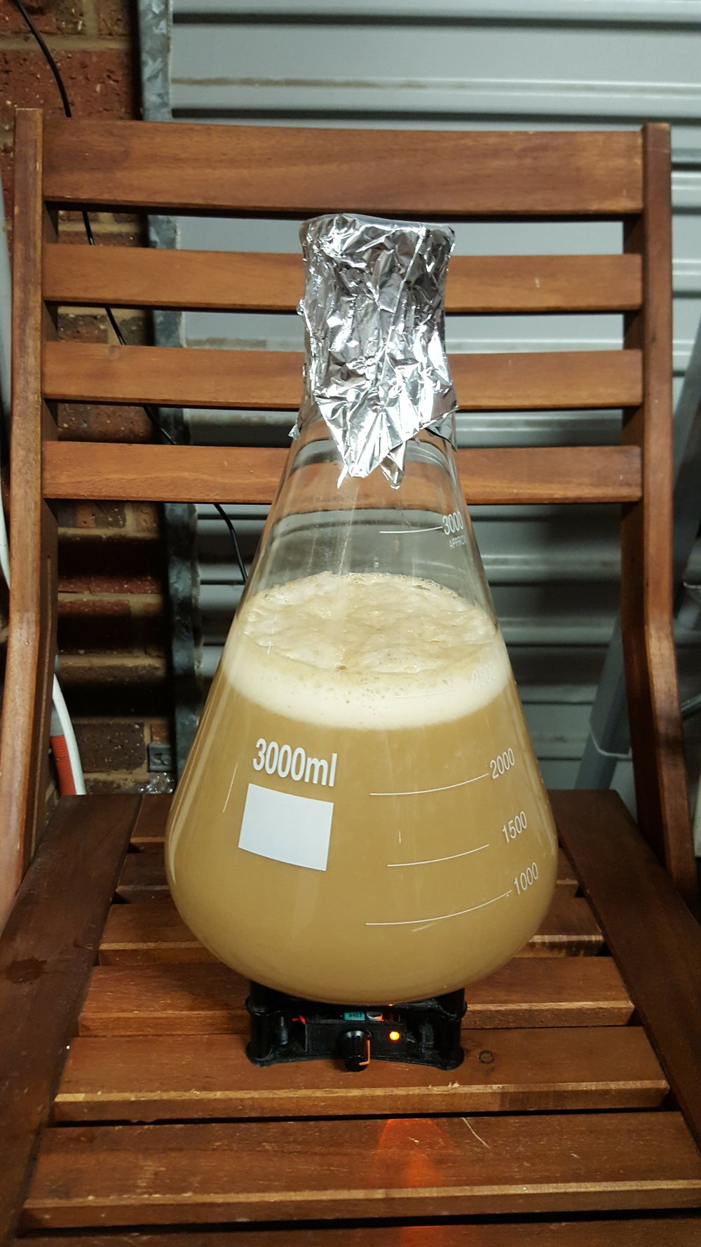 The Yeast Starter