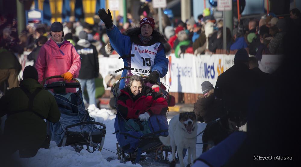 Iditarod Sled dogs #2