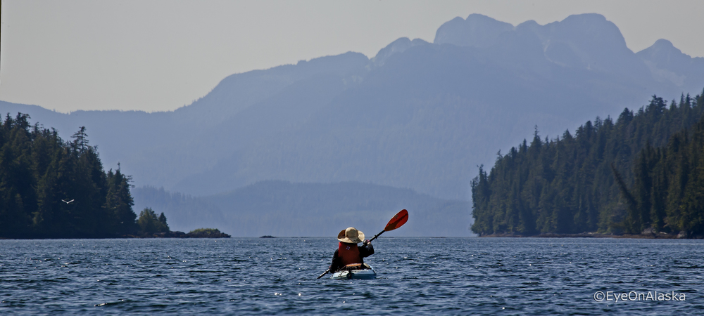 Kayaking Sea Otter Sound, POW Island.