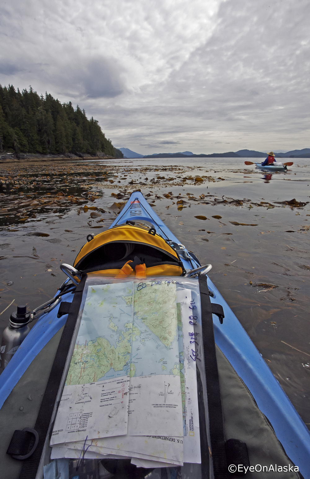 Kep Beds, Tuxekan Island, Sea Otter Sound.
