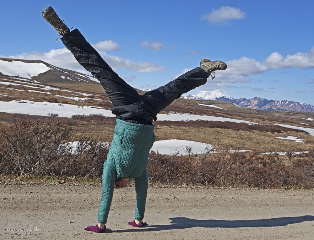 Denali gymnastics