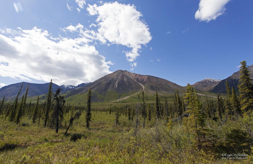 Wrangell-St. Elias volcanoes.
