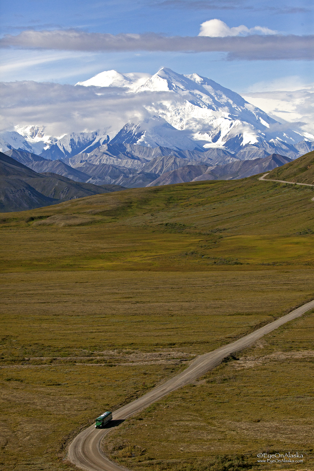 Denali and shuttle bus.