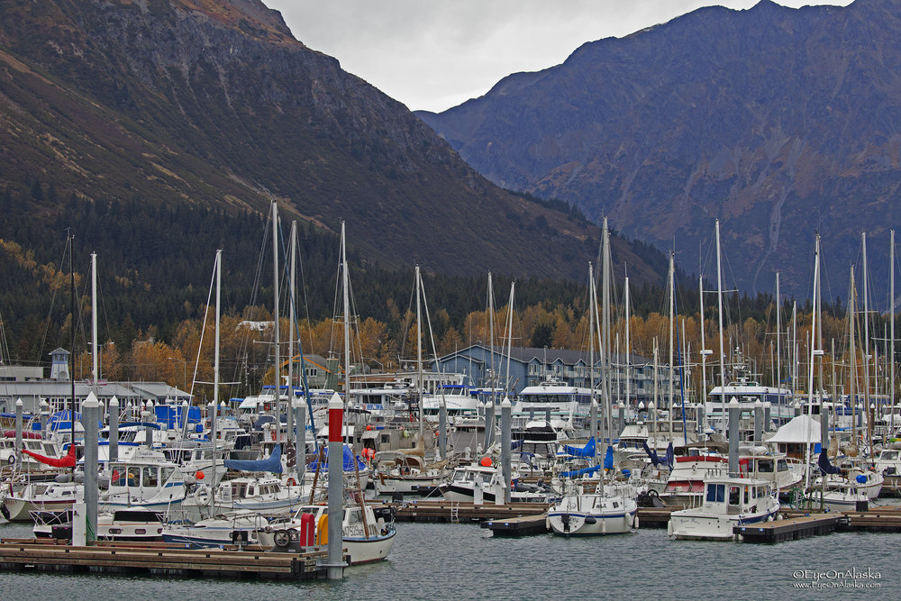 The harbor is a lot quieter this time of year than during the peak of the tourist season.